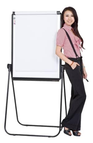 VIZ-PRO ECO Magnetic U-Stand Whiteboard/Flip-chart Easel